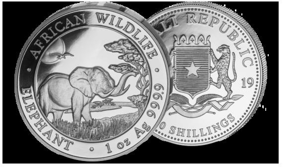 Somalia Elefant 2019